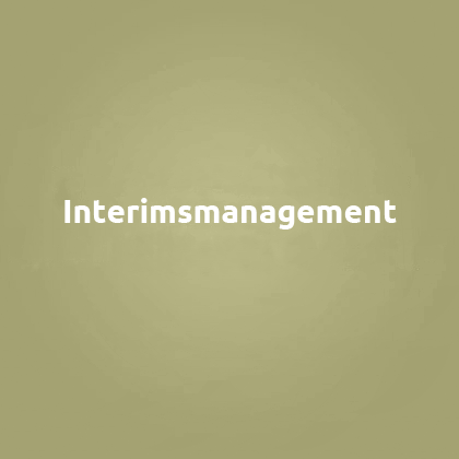 Interimsmanagement
